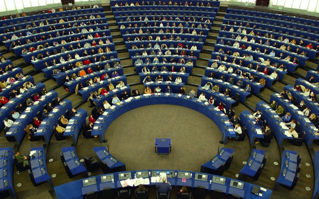 European Parliament endorses the European Green Deal